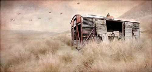 Moorland Carriage - Barbara Hawthorne