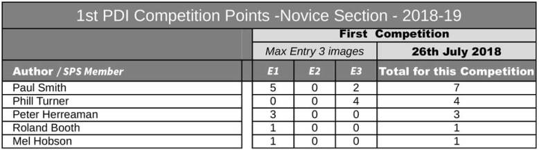 PDI01_results_Novice