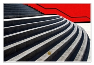 Highly Commended-The Steps-Harvey Bird