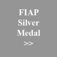 08. FIAP Silver Medal