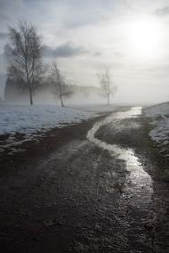 Into the Mist - Mick Jennings