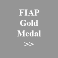 02. fiap gold medal