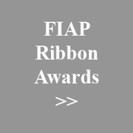 13. fiap ribbon