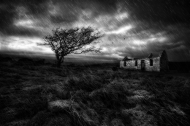 SPS Ribbon -Desolate-Gregory McStraw--Northern Ireland