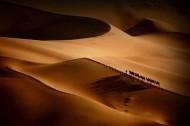 gpu ribbon-camel bell in the desert-shihui liu-china