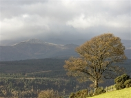 third-snowdonia from the nebo road-les ladbury