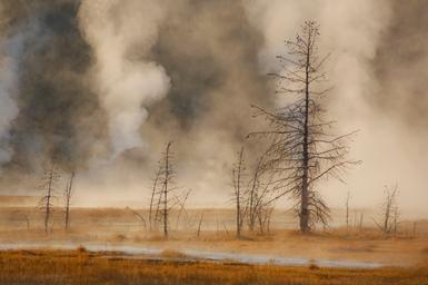 Geyser Landscape
