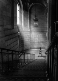 Highly Commended-The Stairway-Warren Alani